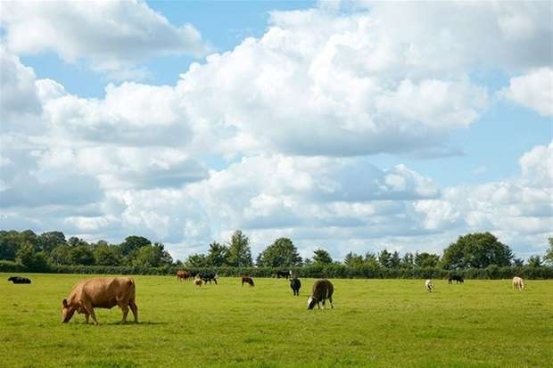 5 Bedrooms Farm Land Commercial for sale in Whaddon Lane, Hilperton, Trowbridge