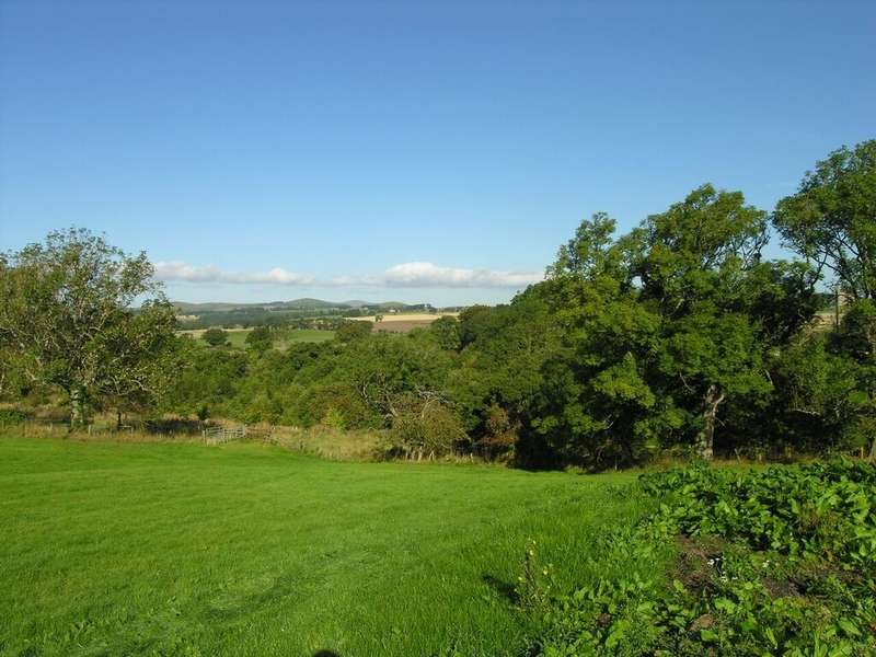 Land Commercial for sale in Treetops, Callaly Road