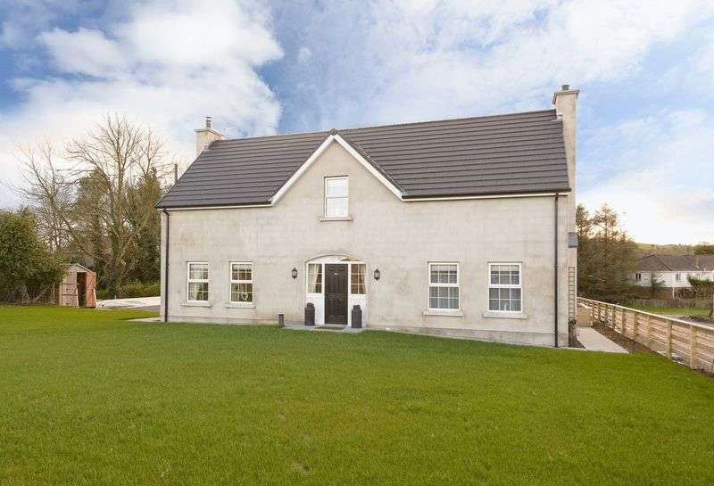 3 Bedrooms Detached House for sale in 164B Old Ballynahinch Road, Lisburn, BT27 6TL