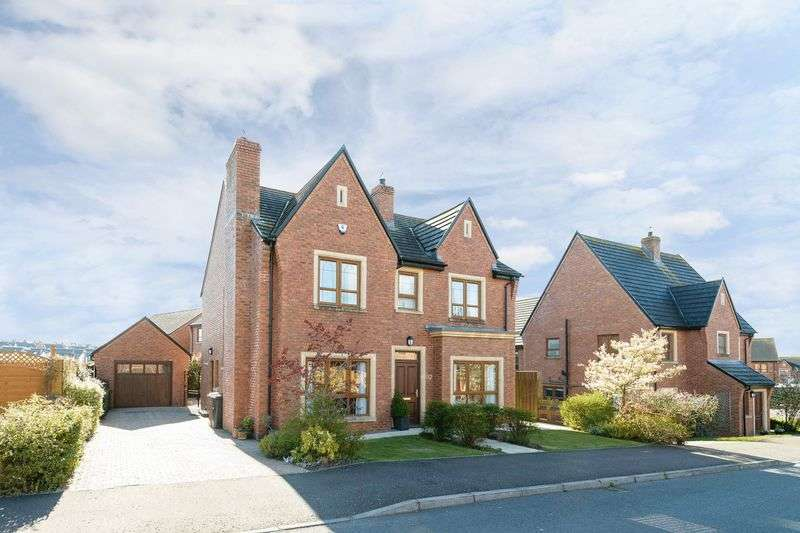 4 Bedrooms Detached House for sale in 82 Brooke Hall Heights, Four Winds, Belfast, BT8 6WN