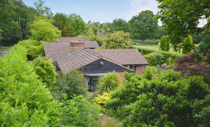 4 Bedrooms Detached Bungalow for sale in Chiddingfold