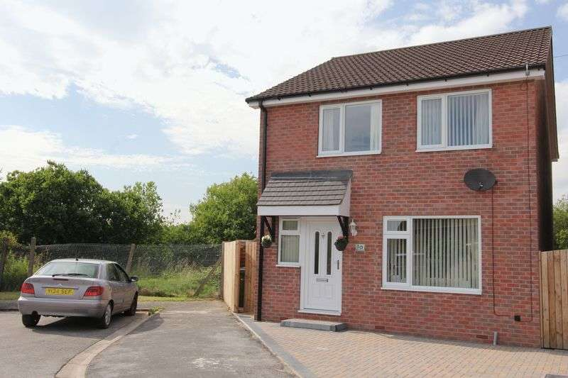 4 Bedrooms Detached House for sale in Teal Road, Newport