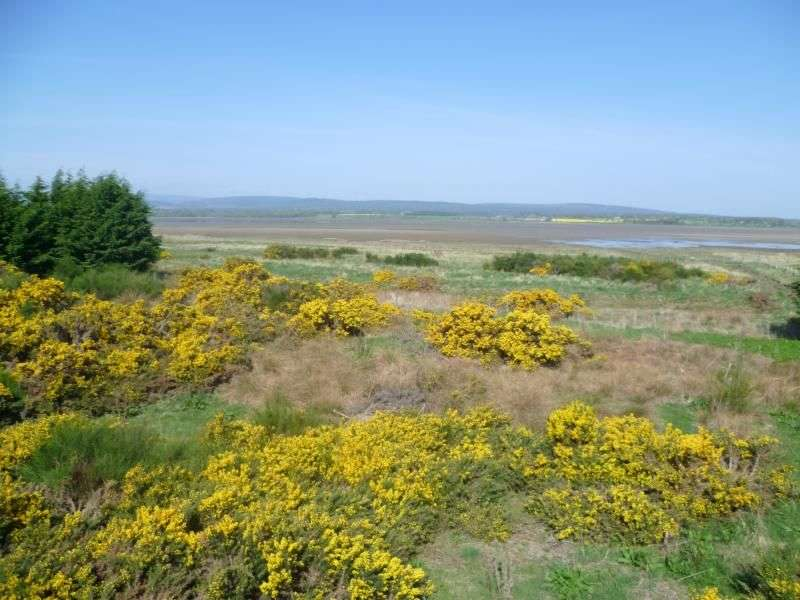Land Commercial for sale in Nigg, Tain, IV19