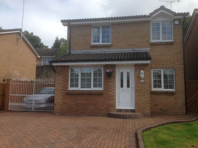 3 Bedrooms Detached House for sale in Clove Mill Wynd, Larkhall, South Lanarkshire, ML9