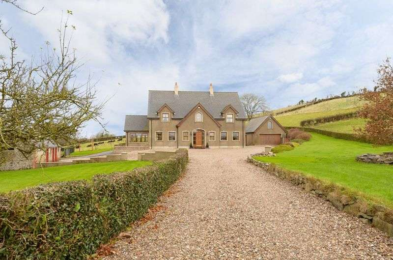 5 Bedrooms Detached House for sale in 9 Carricknaveagh Road, Saintfield, BT27 6UB