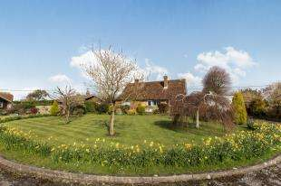 3 Bedrooms Bungalow for sale in Orchard Close, Elsted, Midhurst, West Sussex