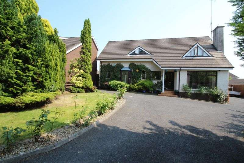 4 Bedrooms Detached House for sale in The Little Forest, Portadown
